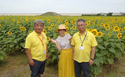 ひまわり園生育状況(7月18日)テレビ取材を受けました。