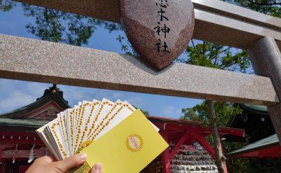 恋木神社へ黄色い絵はがき奉納💛