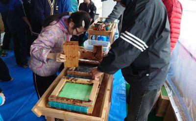 ふくおか森の学校さん海苔すき体験