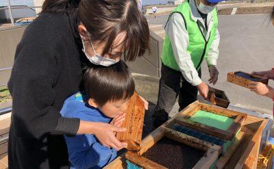 「海苔すき体験」開始!